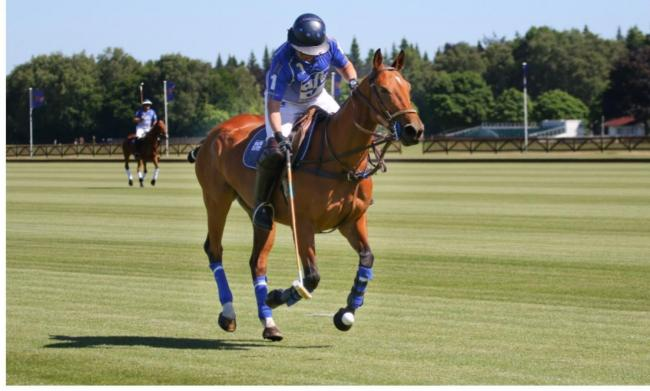 Clive Reid enjoyiImages copyright Images of Polo / Hannah Wyles.ng the new field.