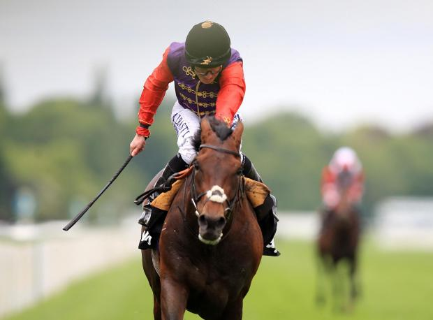 Royal Borough Observer: Dartmouth, ridden by Ryan Moore, wins the Betway Yorkshire Cup during day three of the Dante Festival at York – Picture: Mike Egerton/PA Wire