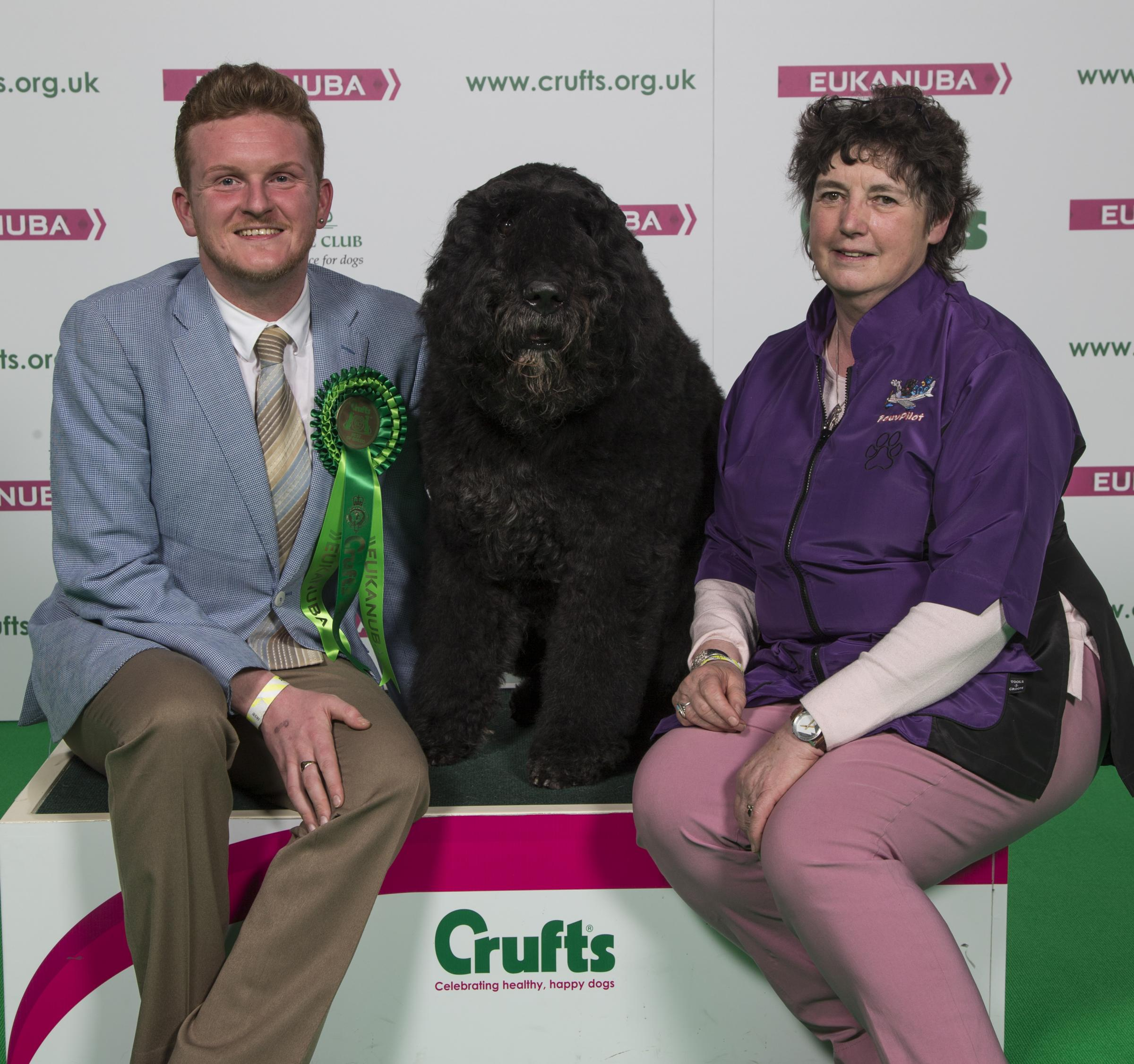 Hector at Crufts with Fiona Lambert and Michael Craig - who is Hector's handler in the ring