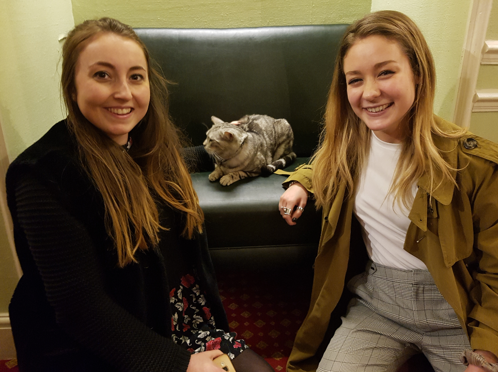 Dexter the cat pops in  at the Theatre Royal - appropriately it was at the opening night party for Birdsong
