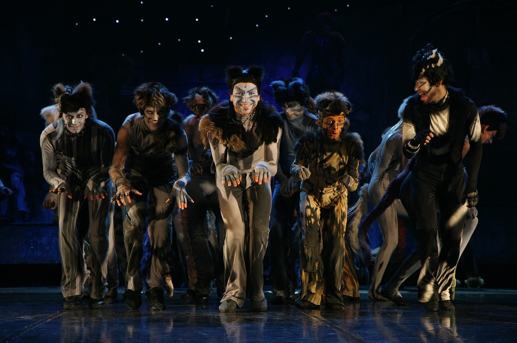 'Cats' is on at the Theatre Royal until Sunday