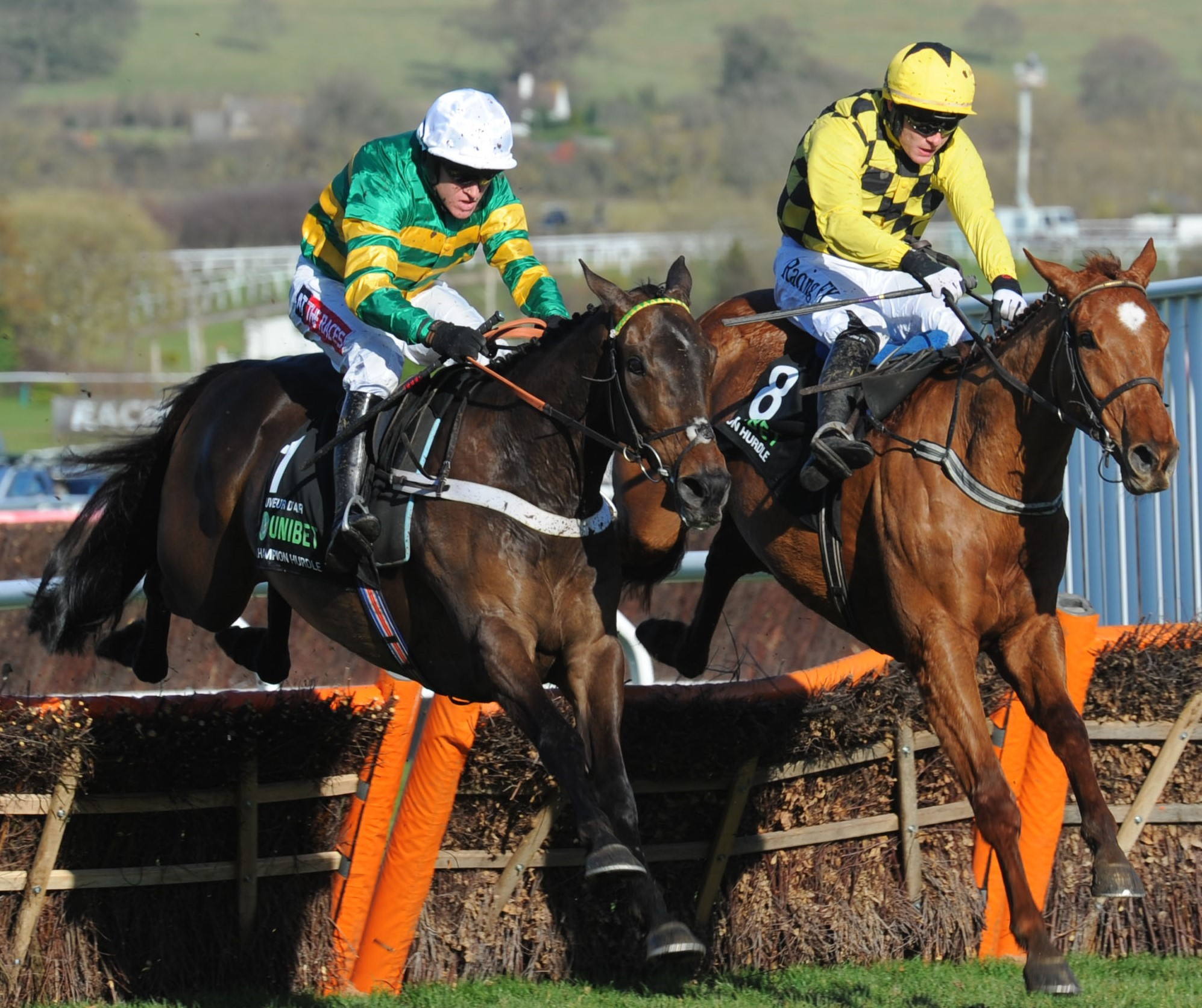Buveur D'Air wins the 2018 Champion Hurdle at Cheltenham. Picture: Sue Orpwood.