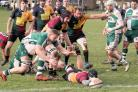 Windsor (black and yellow) beat rivals Slough 55-12 at Home Park in the Southern Counties North this Saturday.